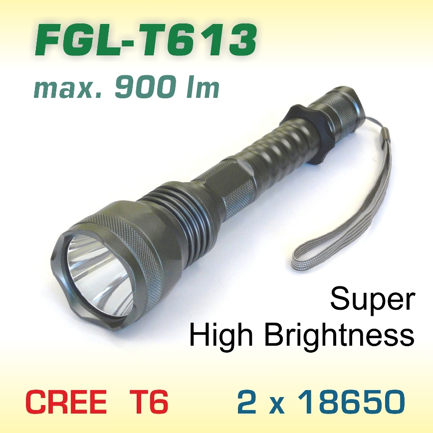 FlexGreen FGL-T613 LED baterka T6, 2x18650